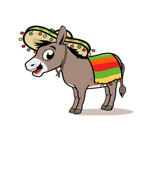 donkey pic