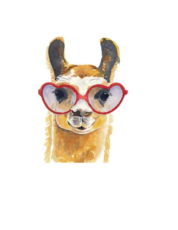 seeing llama